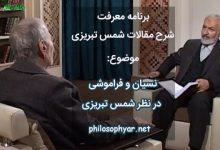 عکس از دو نوع فراموشی در نظر شمس تبریزی